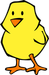 cute little cartoon chick png