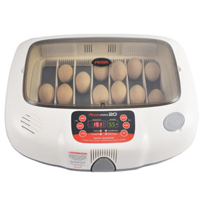 RCOM-20-Digital-Poultry-Incubator-MD