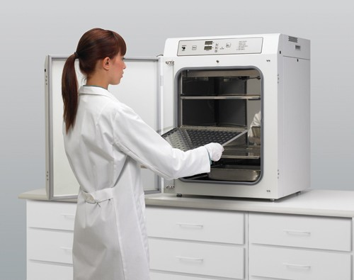 clean-egg-incubator