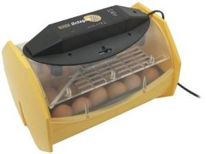Brinsea Octagon 20 ECO Auto Turn Egg Incubator Review