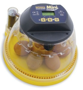Brinsea Mini Advance Hatching Egg Incubator Review
